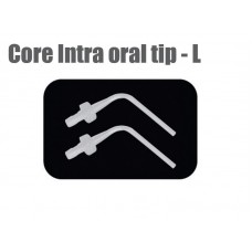 Core Intra Oral Tip - L (S118)